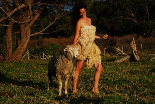 Behind the Scenes: Sheep Couture