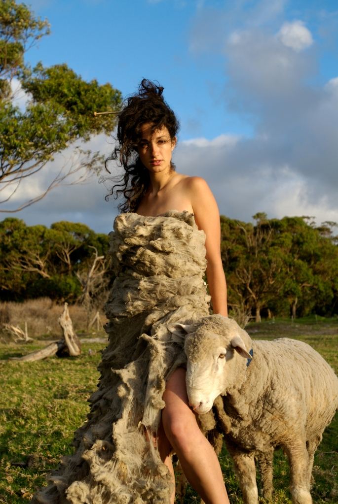 Sheep Couture