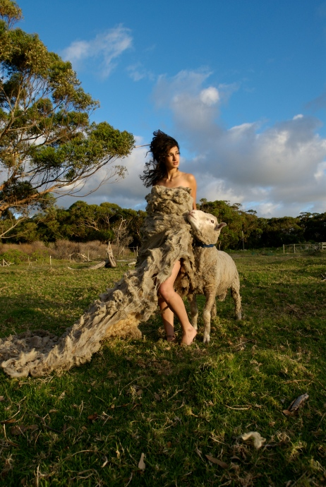 Sheep Couture: Photographer: Charley Pollard, Conceptualist/Producer: Kelly Wilder Wainwright